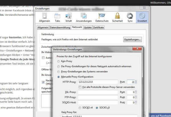 Wenn du über einen Proxy-Server ins Internet willst, musst die hier die IP-Adresse eingeben.