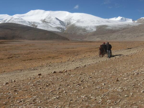 Brache Landschaft: Auf der tibetischen Hochebene können nur wenige Pflanzen überleben.