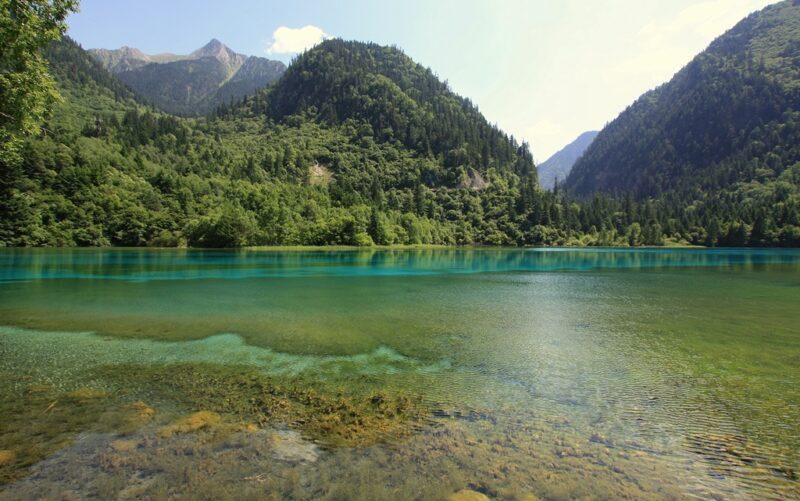 Salze geben den Seen ihre einzigartige Färbung.