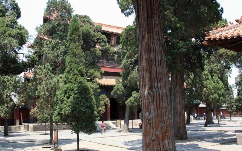 Dort, wo sich heute der Konfuzius-Tempel befindet, soll einst das Wohnhaus des Denkers gestanden haben.